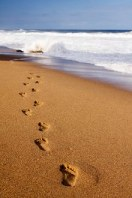 Library Image: Footsteps in Sand (Small)